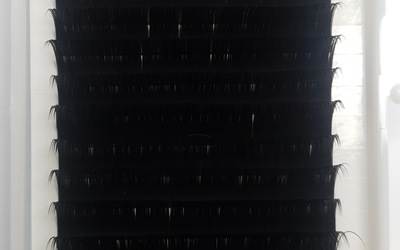 2b7f9691 e696 404c 9161 5f4621b7fc0b